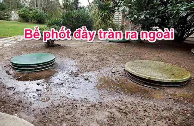 Bể phốt bị tràn ra nơi hệ thống bể tự hoại